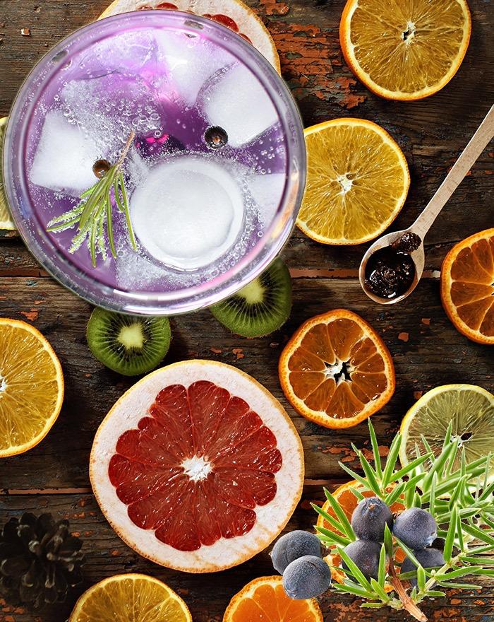 Hvilken Garnish skal jeg bruge i min Gin?