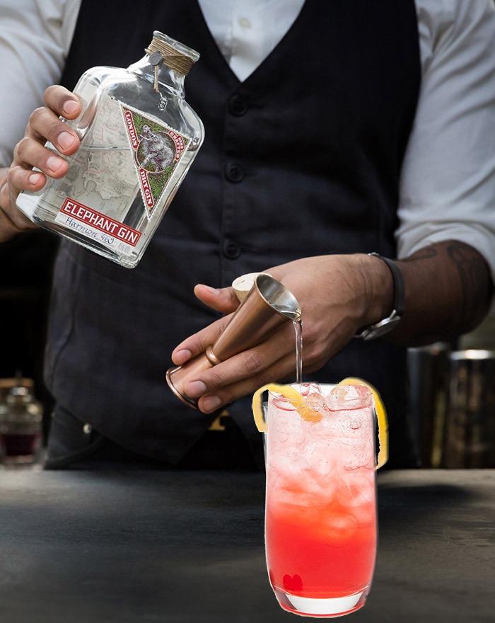Har du prøvet Sloe Fizz Cocktailen med Elephant Gin ?